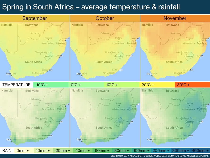 Maps of South Africa in spring showing average temperature and rainfall.