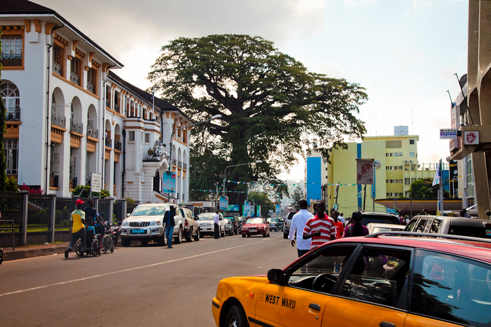 The Old Cotton Tree in the oldest part of Freetown, the capital of Sierra Leone, with the country's Supreme Court building to the left. The massive tree, thought to be about 500 years old, is a historic symbol of the city. On 11 March 1792 some 400 African slaves, liberated for fighting for the British in the American War of Independence, landed on the shore of modern Freetown. They walked up to the great tree above the bay and there held a service of thanksgiving for their freedom.