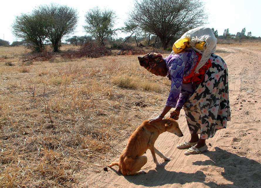 Africanis and owner in rural Namibia. (Johan Gallant, © Africanis Society)