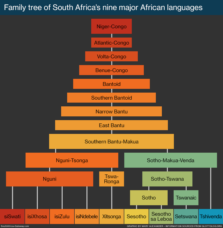 Infographic showing the origins and classification of South Africa's nine major African languages: isiNdebele, isiXhosa, isiZulu, Sesotho sa Leboa, Sesotho, Setswana, siSwati, Tshivenda, and Xitsonga.