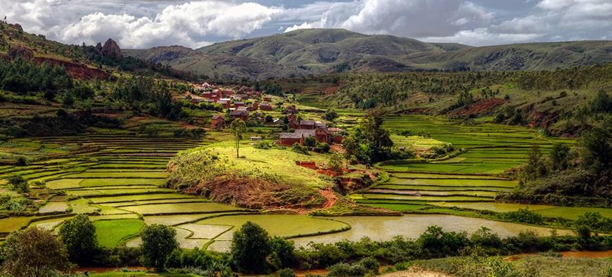 Rice fields and hillscapes encirle a village near Toamasina in the Atsinanana region of eastern Madagascar. (Mariusz Kluzniak, CC BY-NC-ND)